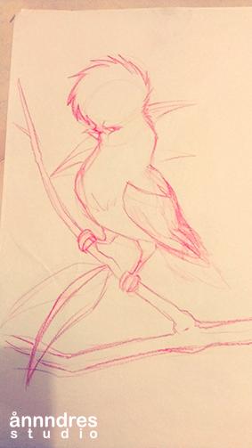rupicola-peruviana-sketch